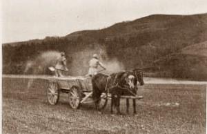 hestene_arbejde1945